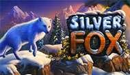 Игровой слот Silver Fox